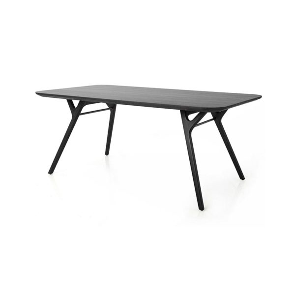 Ren Rectangular Dining Table