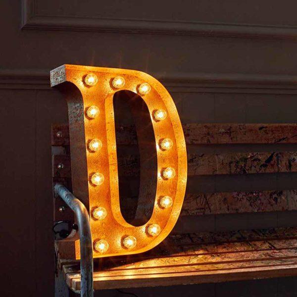 Vintage Letter Light D