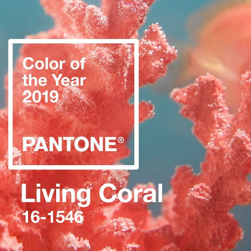 Olson and Baker Pantone-16 Living Coral colour of 2019 Olson and Baker - Designer & Contemporary Sofas, Furniture - Olson and Baker showcases original designs from authentic, designer brands. Buy contemporary furniture, lighting, storage, sofas & chairs at Olson + Baker.